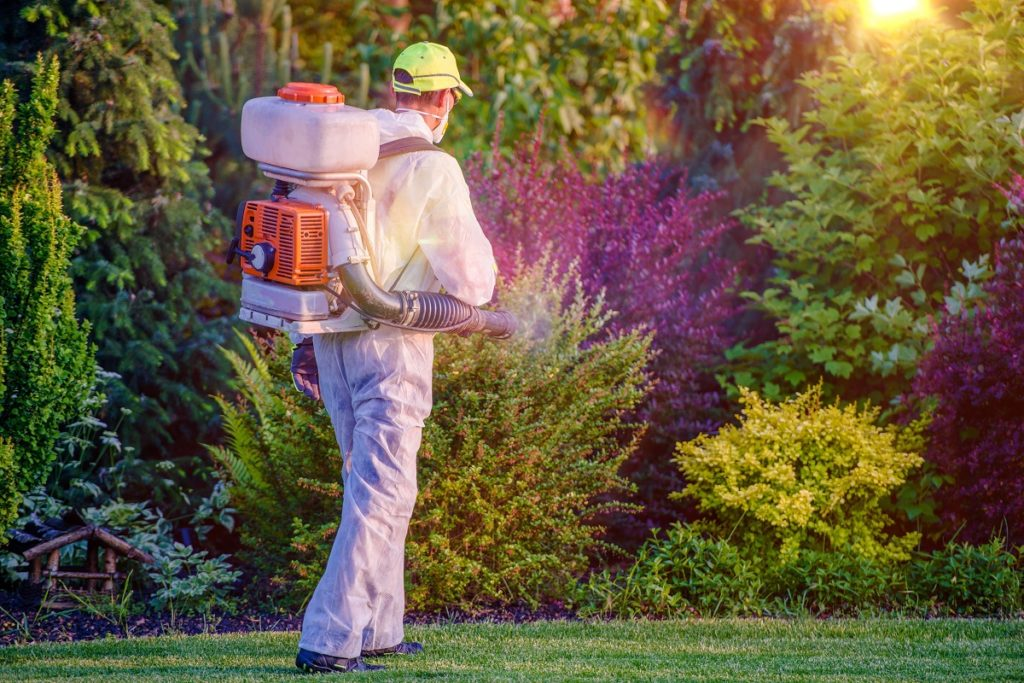 Worker doing pest control