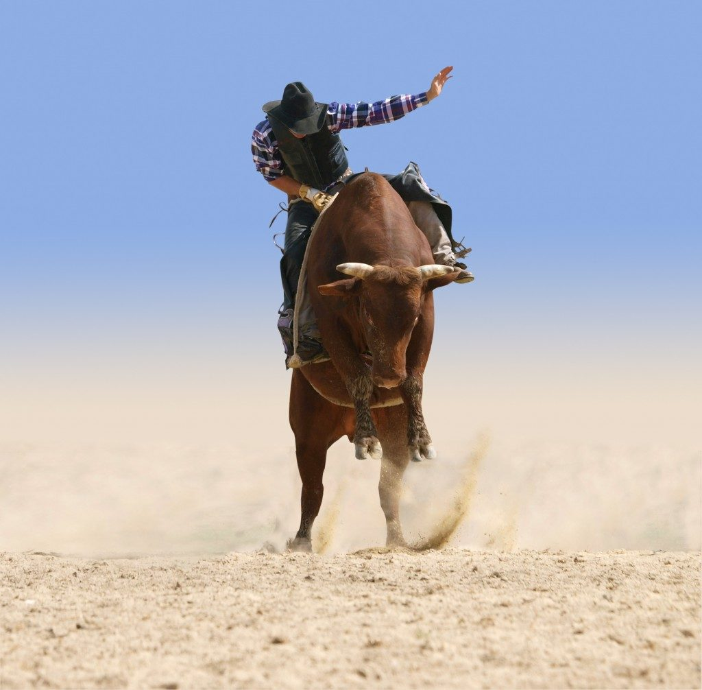 Cowboy Riding a Large Red Bull isolated with clipping path