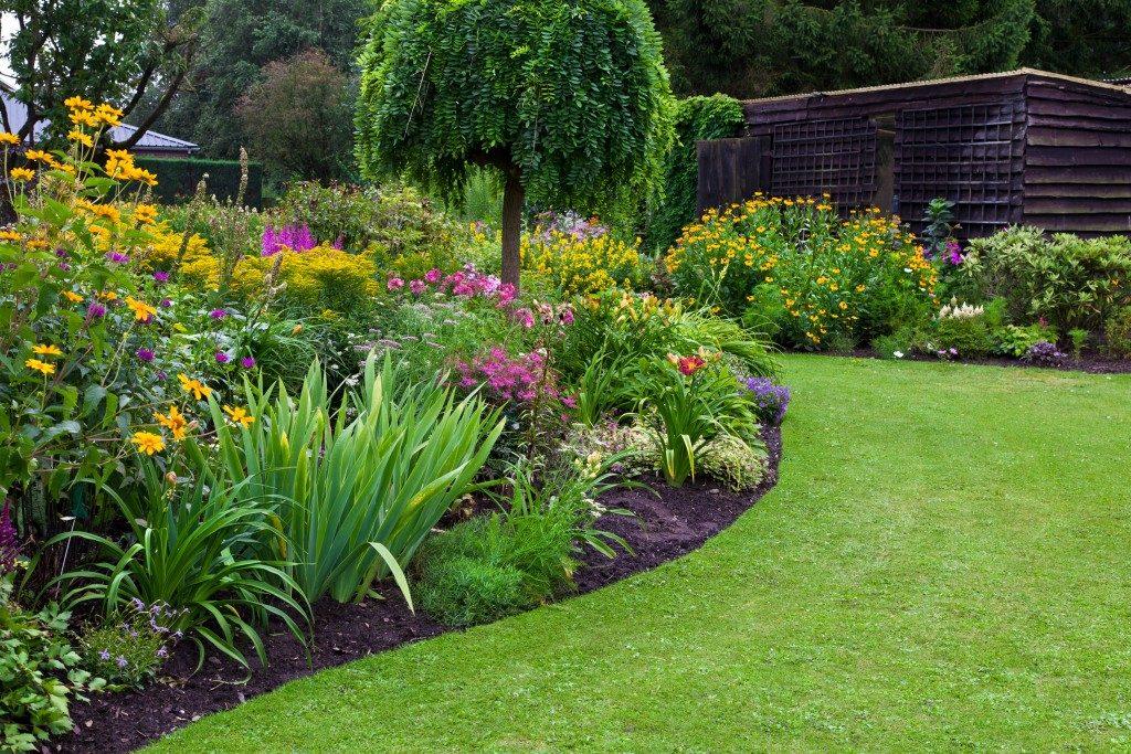 Landscaped backyard garden