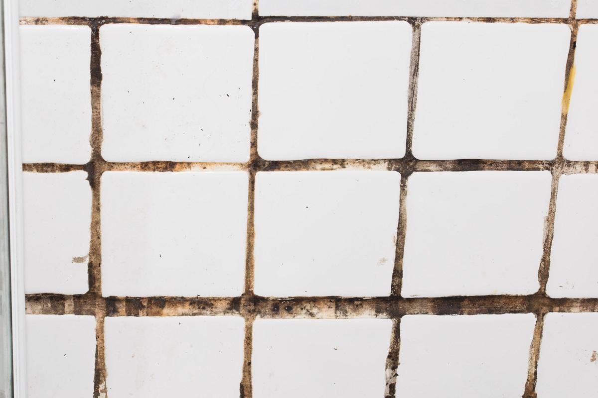 moldy tiles
