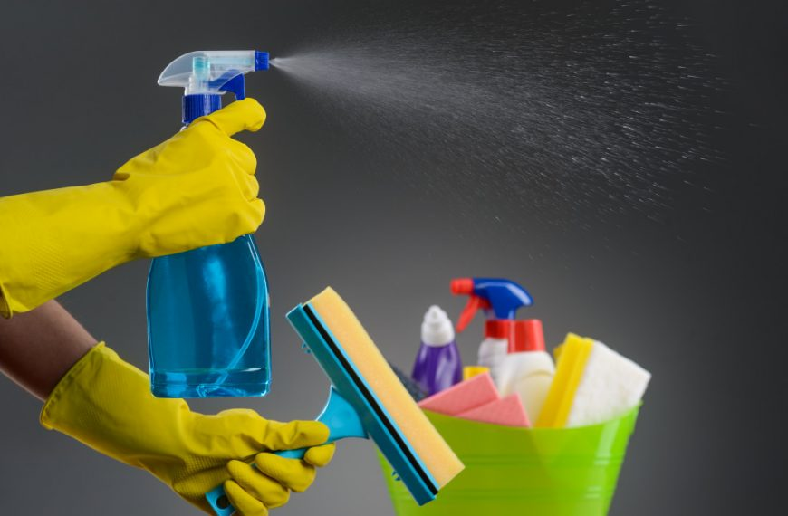 Protecting Your Family: Home Sanitation and Disinfection
