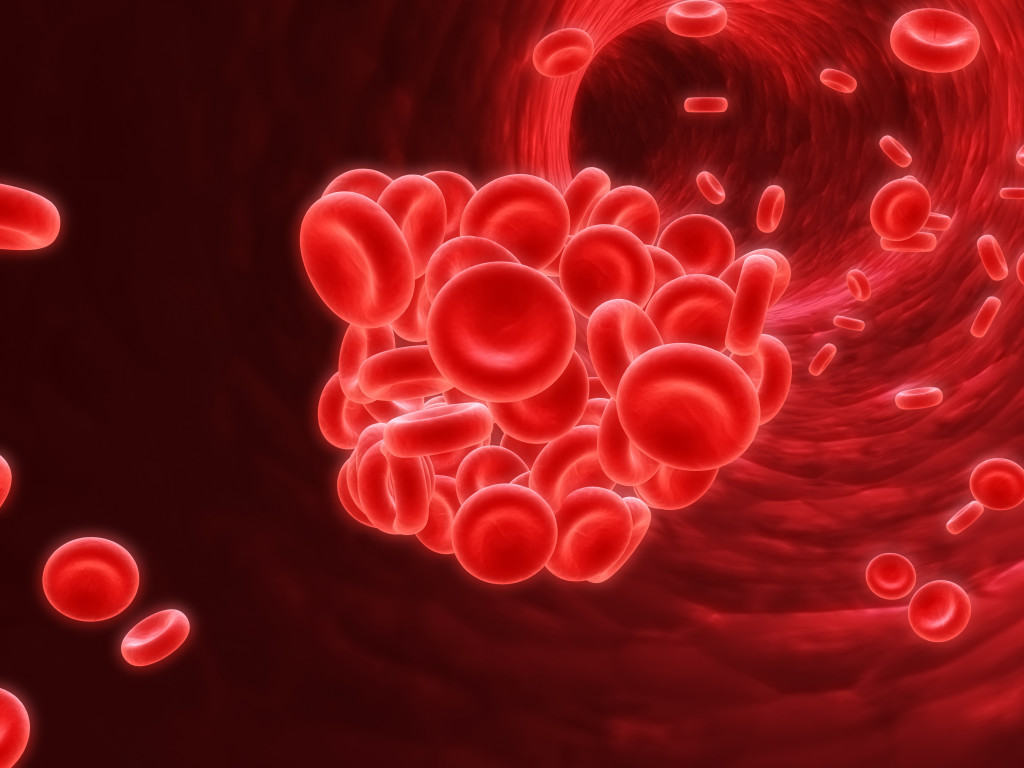 picture of red blood cells grouping together while travelling a blood vessel